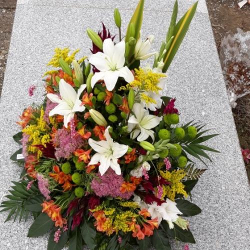 centro de condolencias para tanatorio Veguellina de Orbigo